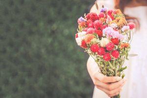 花,4大色素,